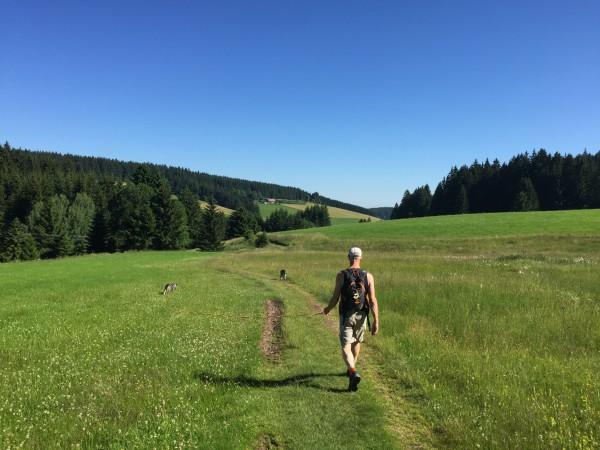 På väg ut på vandring i underbara Schönwald i Schwartzwald, Sydtyskland