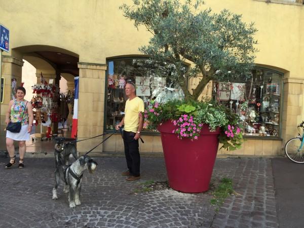 En tur till Colmar i Frankrike (reislingvin staden). Grabbarna hänger naturligvis med