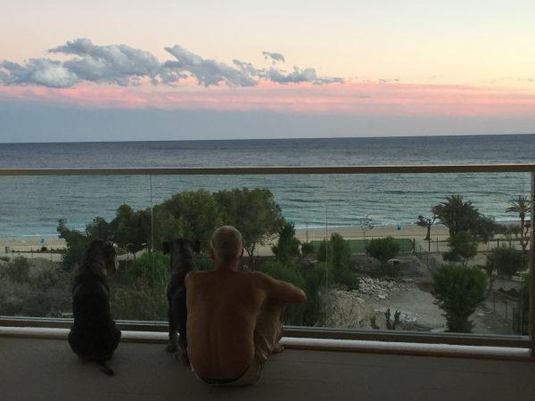 Mina fina killar beundrar utsikten