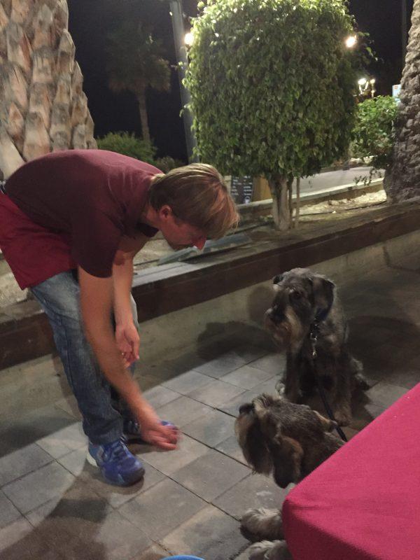 På vissa restauranger räcker det inte med att vovvarna bjuds på vatten, här blir det även lite smarrigt att äta, japp dom flesta är verkligen förtjusta i hundar där vi bor!