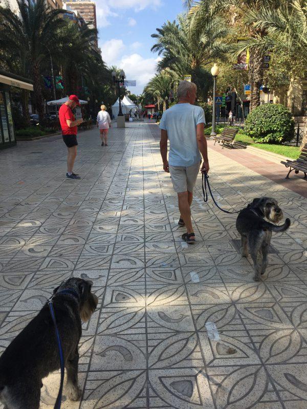 På besök i trevliga Alicante!