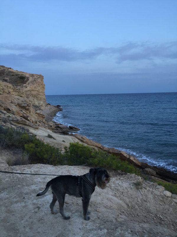 Vandring längs klipporna